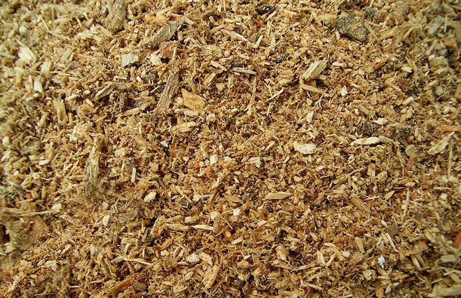 オオクワガタ成虫の飼育方法 昆虫マット 広葉樹マット