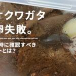オオクワガタの産卵失敗。産卵しない時に確認すべきポイント。