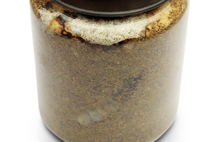 タランドゥス幼虫の菌糸ビンの交換について